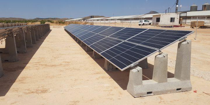 Instalaciones fotovoltaicas en granjas avícolas
